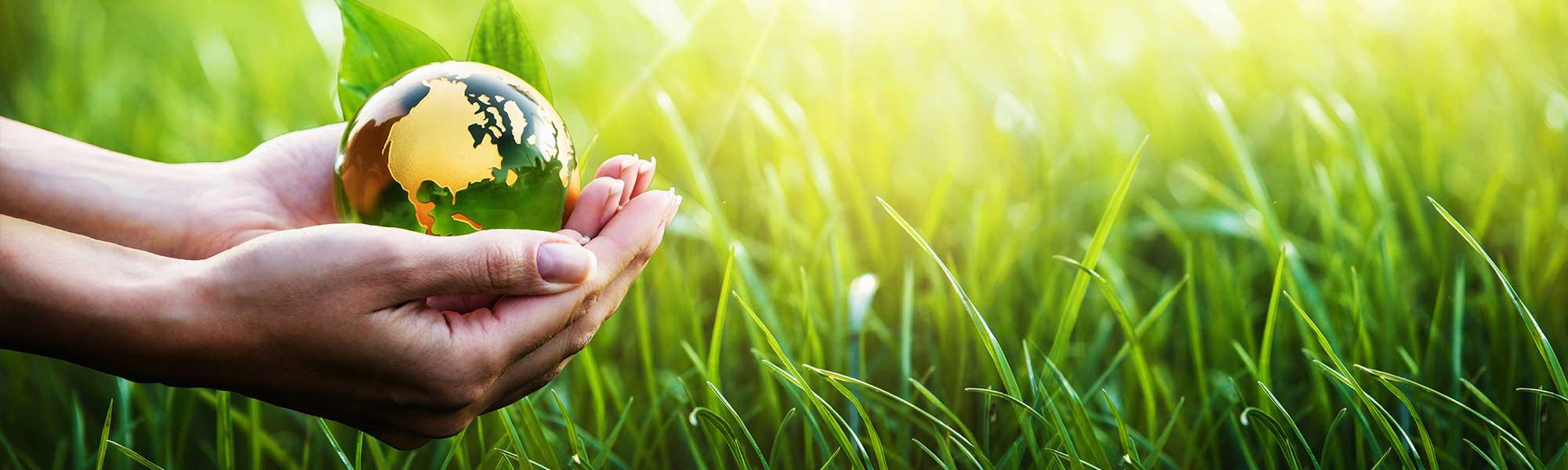 Grass, hand and globe